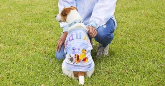 Disney's new fashion line is every pet owner's dream
