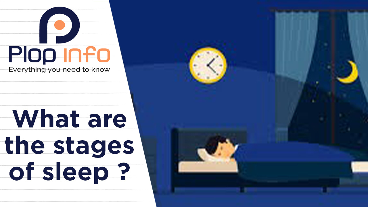 What are the stages of sleep ? Everything You Need To Know   Plop Info