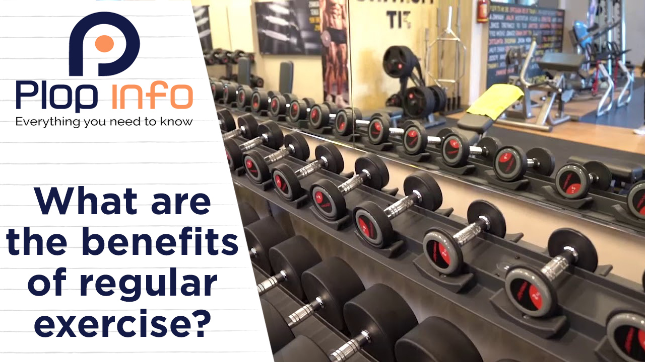 What are the benefits of regular exercise? | Everything You Need To Know | Plop Info