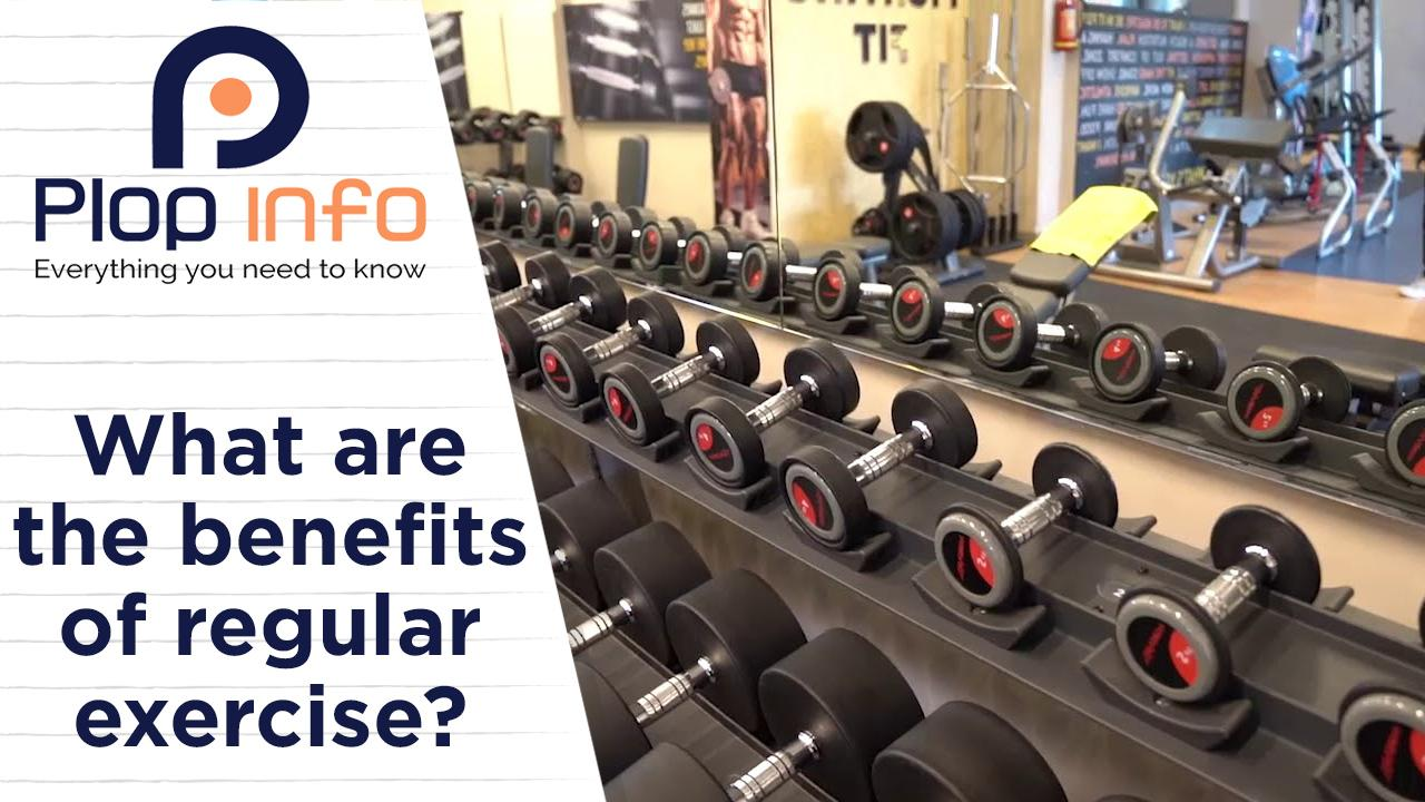 What are the benefits of regular exercise?   Everything You Need To Know   Plop Info