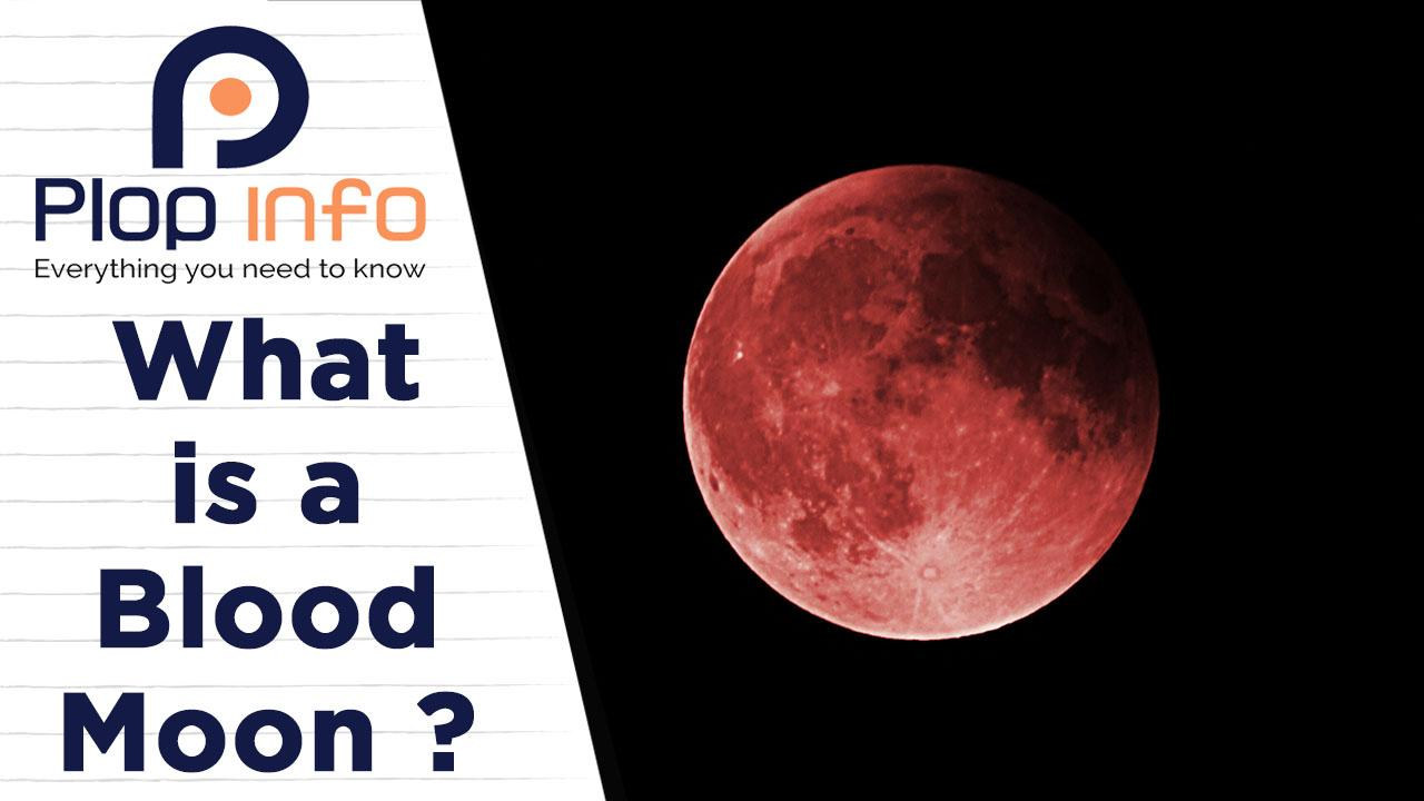 What is Super Flower Blood Moon and where can it be watched? | Everything You Need To Know | Plop Info