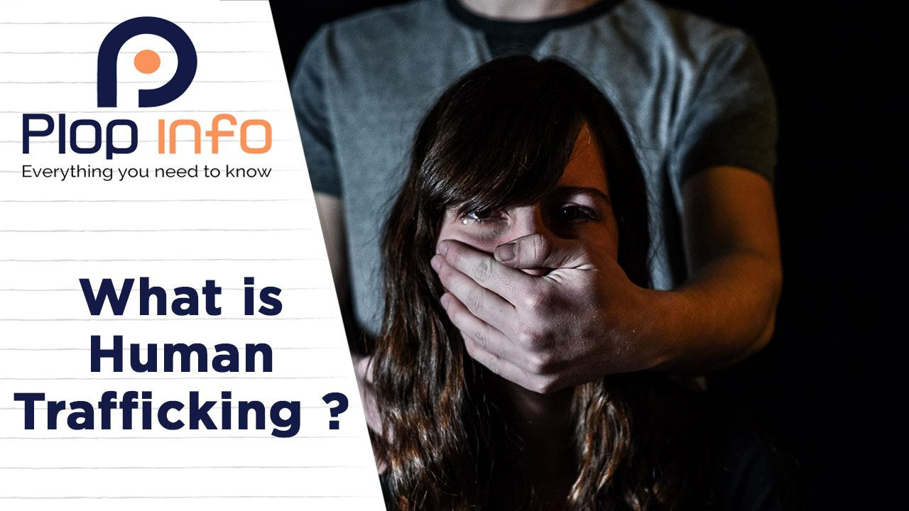 What is Human Trafficking ?   Everything You Need To Know   Plop Info