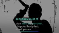 Gurugran: Man kills business partner, chops up body