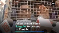 Shelter home abuse: SC orders shifting of jailed 'kingpin' to Punjab