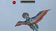 Telangana's International Kite Festival was a treat to witness