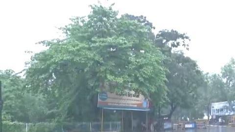Weather Update: Bihar में जारी है बारिश, Delhi-UP को लेकर अलर्ट, जानें अपने राज्य के मौसम का हाल