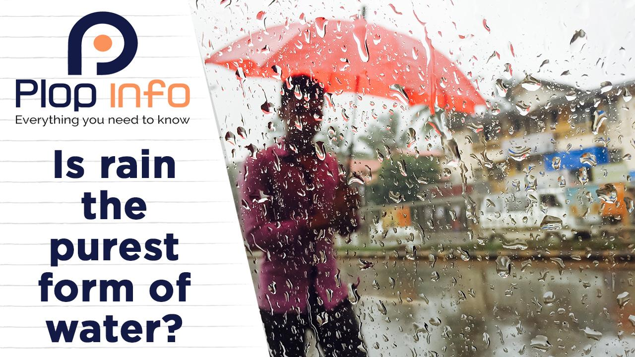 Is rain the purest form of water ? | Everything You Need To Know | Plop Info