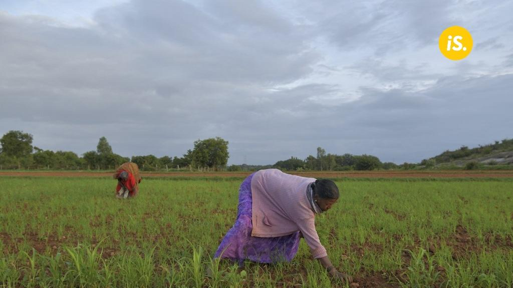 'Stalled growth & investment is pushing India's labour force to return to farms'